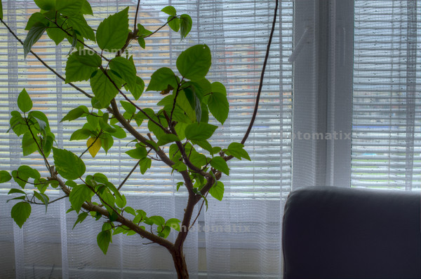 13112101_06_Photomatix_5_Detail_Enhancer_black