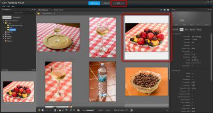 Corel PaintShop X7 prostredi modulu Manage