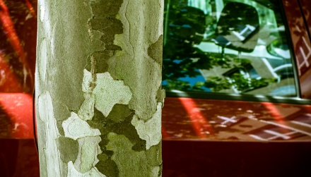 fotografické základy expoziční režimy