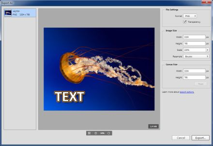 Adobe Photoshop CC 2015 Export As dialog